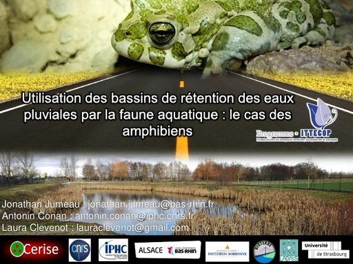 2020 04 17 Bassins Présentation